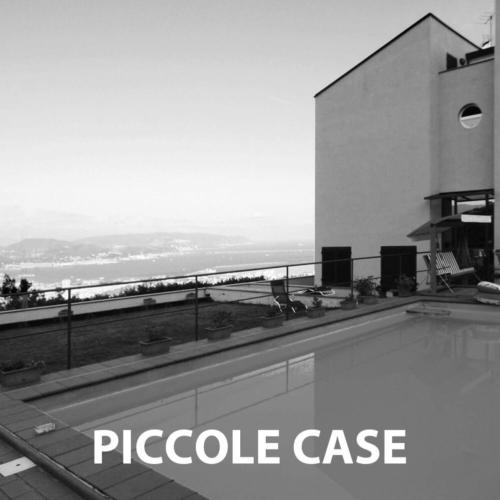 PICCOLE CASE