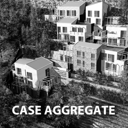 CASE AGGREGATE